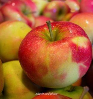 Jabłko ekologiczne przemysłowe lub rwane