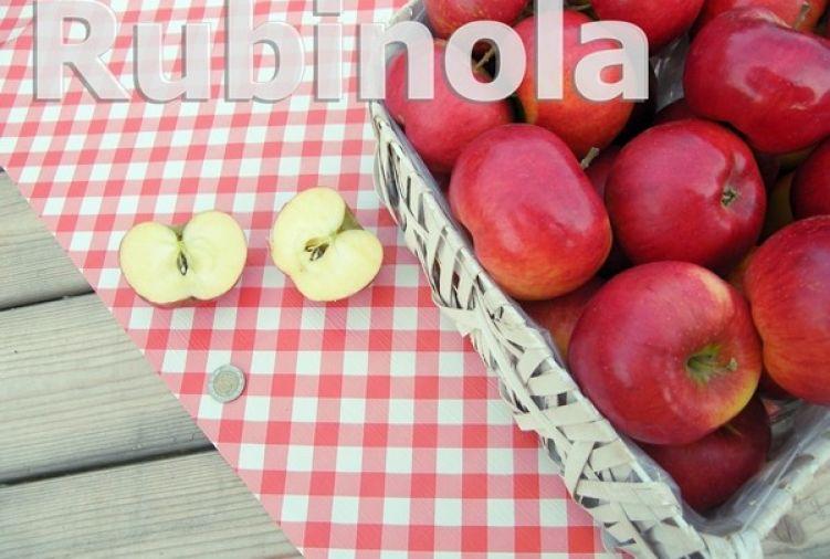 Jabłko odm. Rubinola